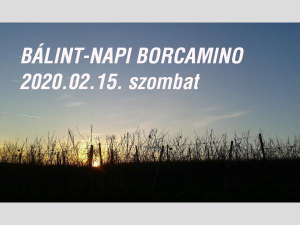 Bálint-napi BorCamino a Pannonhalmi borvidéken