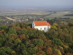 Borvidék